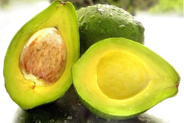 Lets talk about the medicinal richness of Avocados